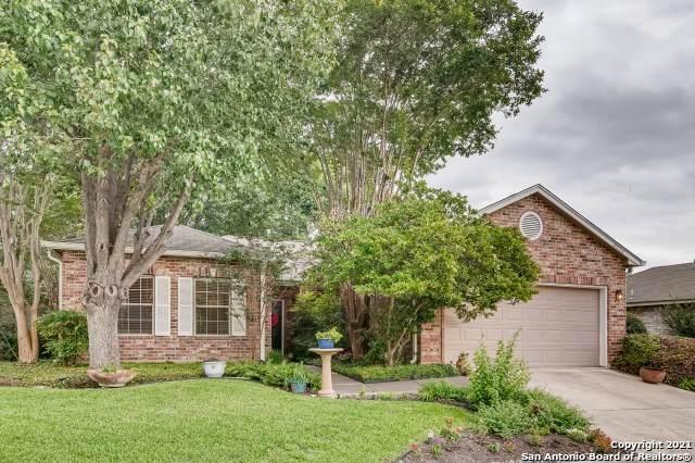 2032 Canyon Vista, San Antonio, TX 78247 (MLS #1532995) :: Concierge Realty of SA
