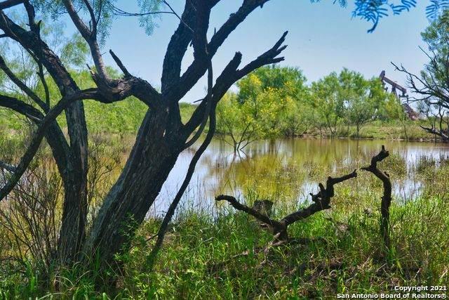 1421 Fm 1582, Cotulla, TX 78014 (MLS #1533426) :: Williams Realty & Ranches, LLC