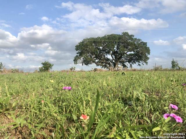 1162 County Road 122, Floresville, TX 78114 (MLS #1533440) :: The Glover Homes & Land Group