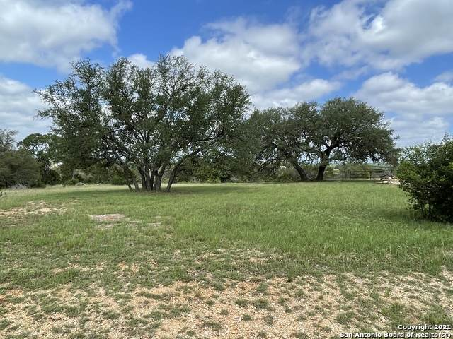 LOT584 Little Sorrel Way, Bandera, TX 78003 (MLS #1533599) :: Alexis Weigand Real Estate Group