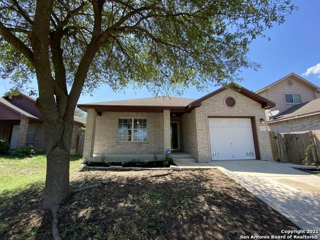 8527 Shaenfield Pl, San Antonio, TX 78254 (MLS #1533777) :: Bexar Team