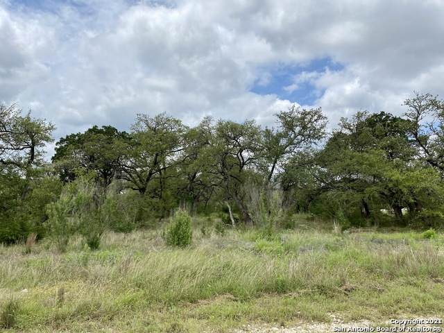 5697 Comal Vista, New Braunfels, TX 78132 (MLS #1533794) :: The Castillo Group