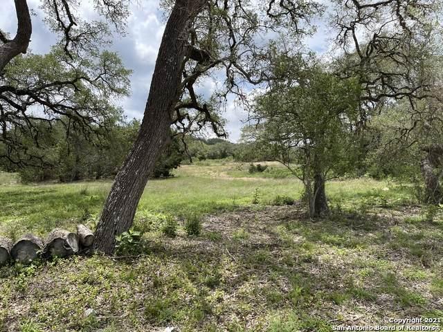 11106 Nina Ridge, San Antonio, TX 78255 (MLS #1533898) :: Concierge Realty of SA
