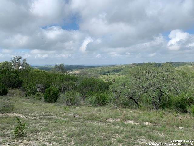 L 3 Pattys Way, Spring Branch, TX 78070 (MLS #1533968) :: The Rise Property Group