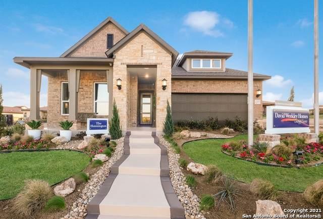 23003 Grande Vista, San Antonio, TX 78261 (MLS #1534104) :: Real Estate by Design