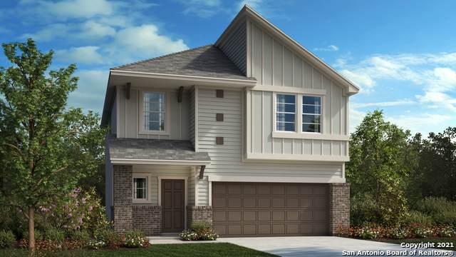 4742 Audubon Place, San Antonio, TX 78247 (MLS #1534107) :: The Glover Homes & Land Group