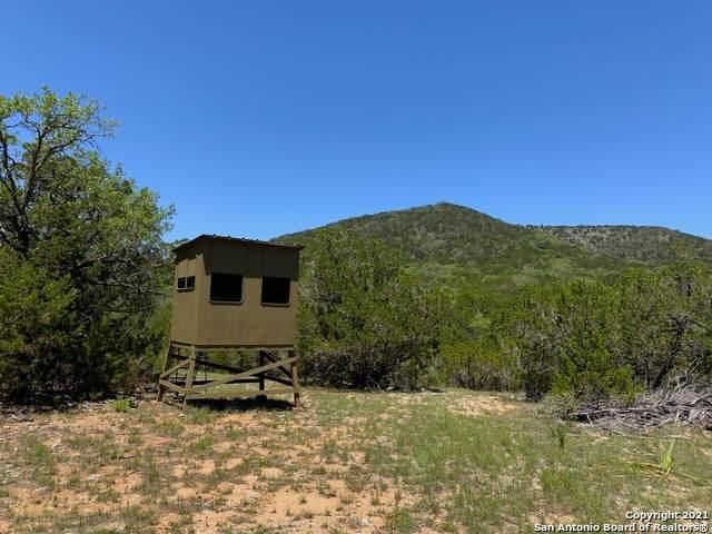 000 County Road 211 Esm, Tarpley, TX 78883 (MLS #1534122) :: The Castillo Group