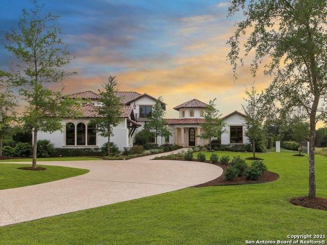 203 Wellesley Lndg, San Antonio, TX 78231 (MLS #1534225) :: The Glover Homes & Land Group