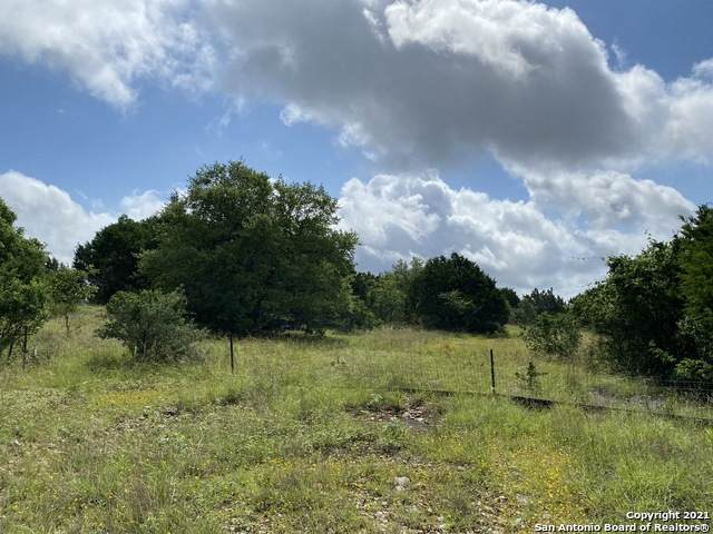 1032 Riesling, New Braunfels, TX 78132 (MLS #1534284) :: The Lopez Group