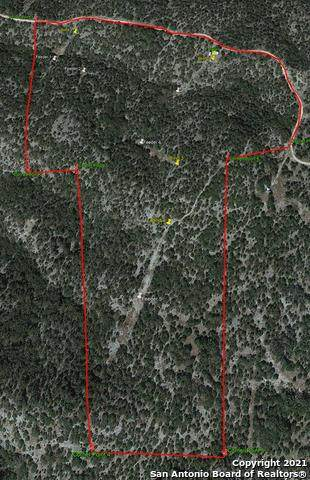 0000 Whitemountain Road (Cr 310), Rocksprings, TX 78880 (MLS #1534325) :: The Castillo Group