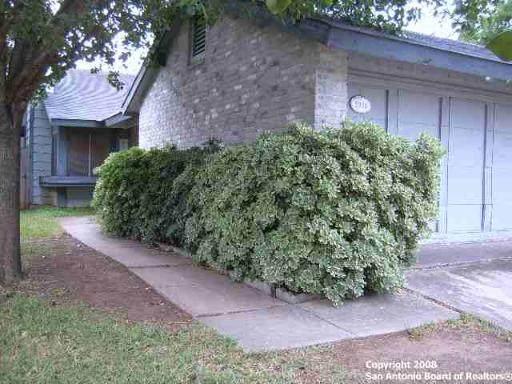 5936 Misty Glen, San Antonio, TX 78247 (MLS #1534663) :: 2Halls Property Team | Berkshire Hathaway HomeServices PenFed Realty