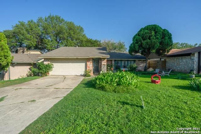 3854 Briarcrest St, San Antonio, TX 78247 (MLS #1534745) :: Vivid Realty