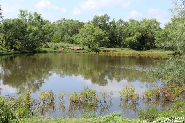 715 Lilly Bear Lane - Tract 15, Moore, TX 78057 (MLS #1534773) :: Neal & Neal Team