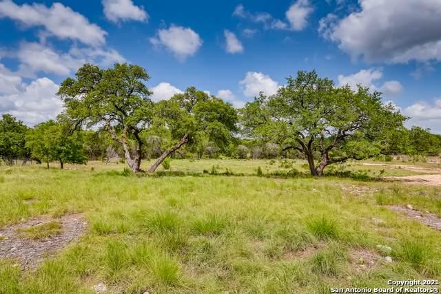 5668 Dry Comal Dr, New Braunfels, TX 78132 (MLS #1534887) :: The Castillo Group