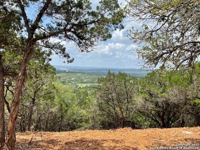 31215 Tres Lomas, Bulverde, TX 78163 (MLS #1534954) :: Keller Williams Heritage