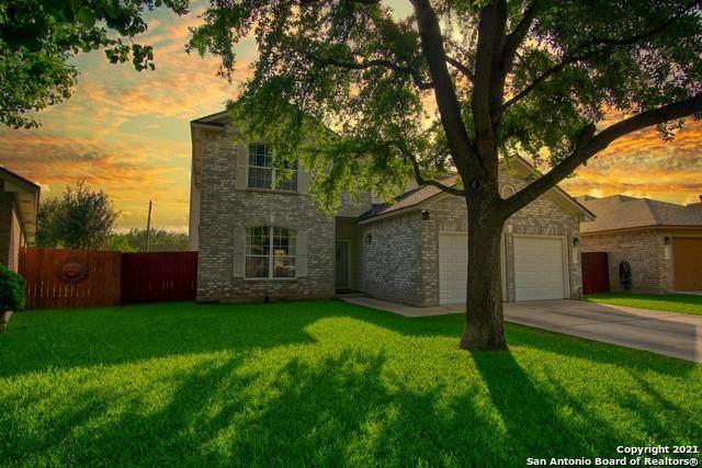 3135 Preston Hall Dr, San Antonio, TX 78247 (MLS #1535033) :: Real Estate by Design