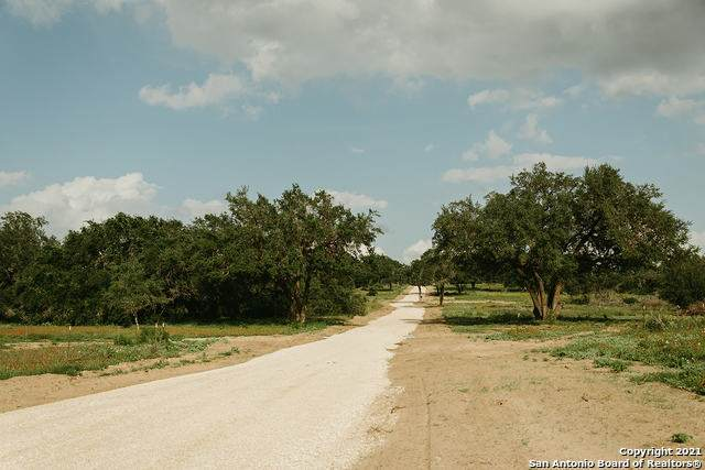 21768 Toudouze Rd, San Antonio, TX 78264 (#1535062) :: The Perry Henderson Group at Berkshire Hathaway Texas Realty