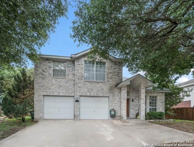 13646 Summer Glen Dr, San Antonio, TX 78247 (MLS #1535108) :: Concierge Realty of SA