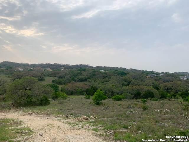 163 Northridge, New Braunfels, TX 78132 (MLS #1535210) :: The Lopez Group