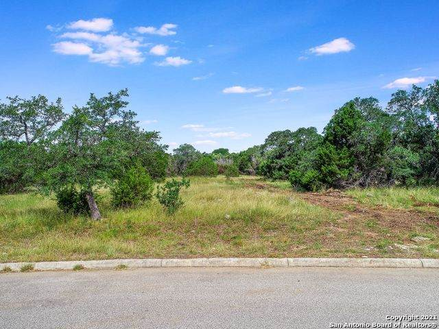 115 Ashling, San Antonio, TX 78260 (MLS #1535680) :: The Castillo Group