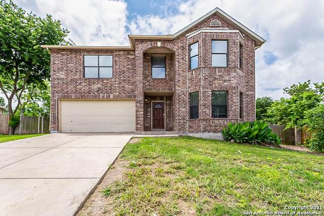 101 Springtree Grove, Cibolo, TX 78108 (MLS #1535746) :: The Real Estate Jesus Team