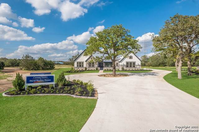 992 Annabelle Ave, Bulverde, TX 78163 (MLS #1535824) :: The Gradiz Group