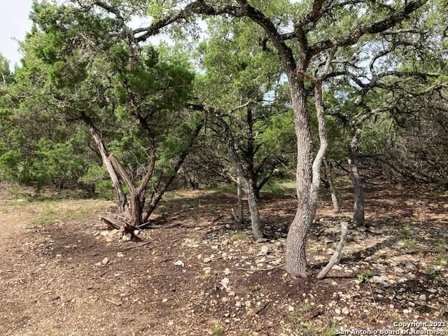 257 Ceremonial Ridge, San Antonio, TX 78260 (MLS #1535876) :: The Glover Homes & Land Group