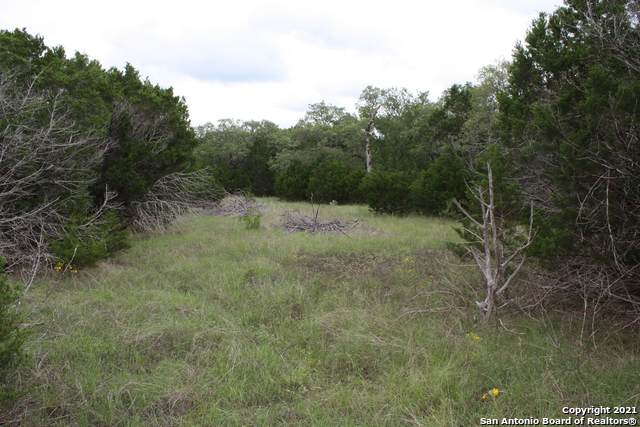 LOT 2 Horseshoe Bnd, Boerne, TX 78006 (MLS #1536293) :: Alexis Weigand Real Estate Group