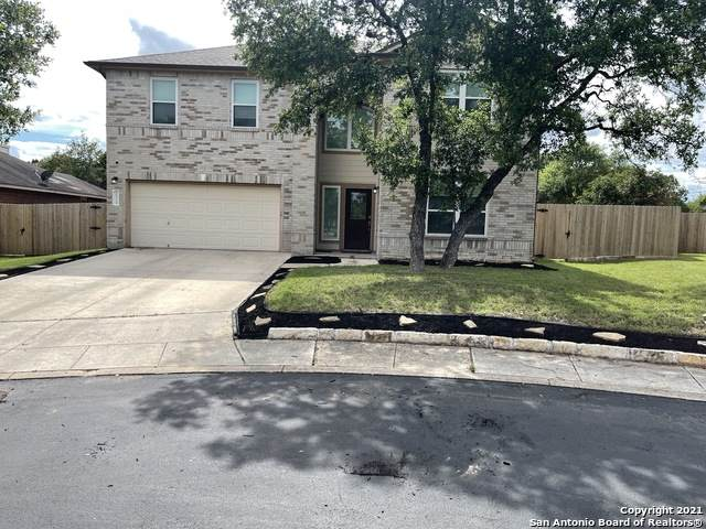 26319 Shirley Heights, San Antonio, TX 78260 (MLS #1536320) :: The Glover Homes & Land Group
