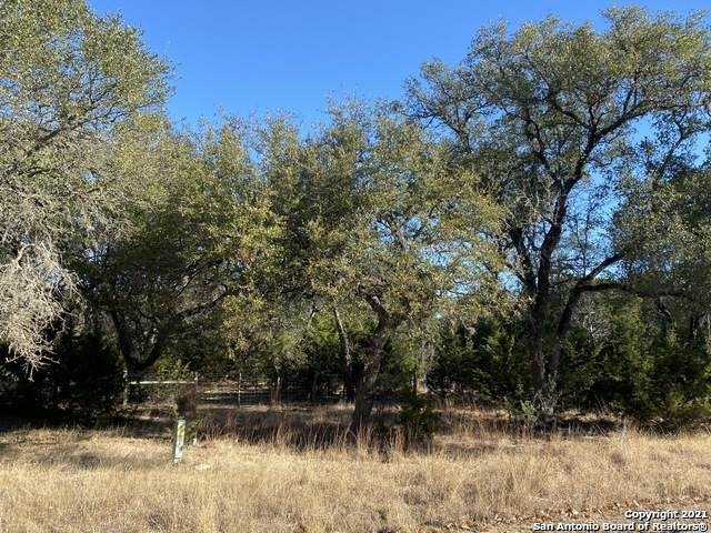 LOT 14 Riverwood, Boerne, TX 78006 (MLS #1536324) :: Alexis Weigand Real Estate Group