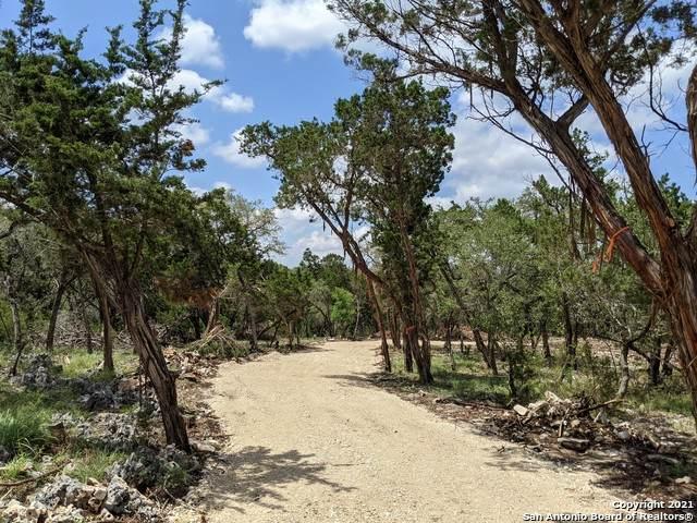 150 Wireweed Dr, New Braunfels, TX 78132 (MLS #1536344) :: Beth Ann Falcon Real Estate