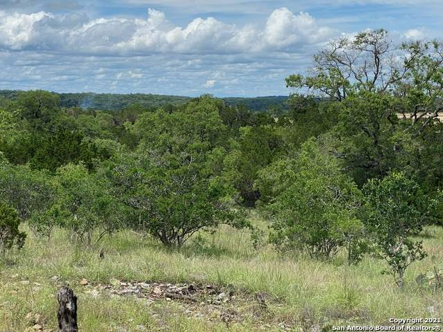 LOT 1714 Cattle Dell, New Braunfels, TX 78132 (MLS #1536597) :: The Lopez Group