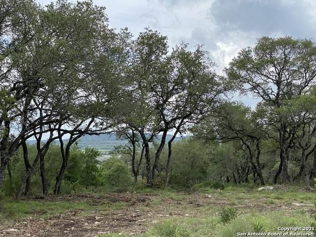 31049 Johnson Way, Bulverde, TX 78163 (MLS #1537220) :: Bexar Team