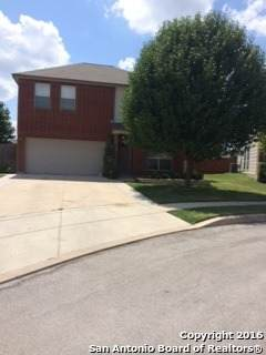 4311 Acorn Creek Dr, San Antonio, TX 78251 (MLS #1537401) :: The Castillo Group