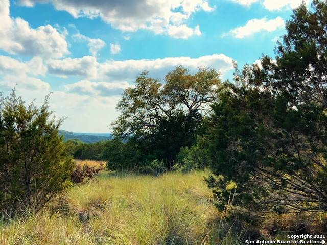 115 Upper River Pl, Spring Branch, TX 78070 (MLS #1537465) :: The Gradiz Group
