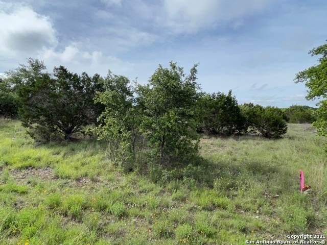 277 Stargrass, Spring Branch, TX 78070 (MLS #1537547) :: Beth Ann Falcon Real Estate