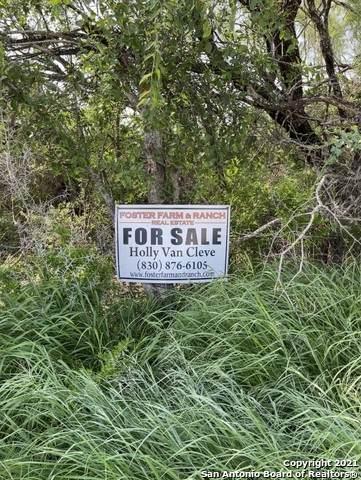 CR 303 Cr 301, Knippa, TX 78870 (MLS #1537564) :: Carter Fine Homes - Keller Williams Heritage