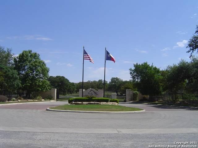 LOT 561 Palomino Springs - Photo 1