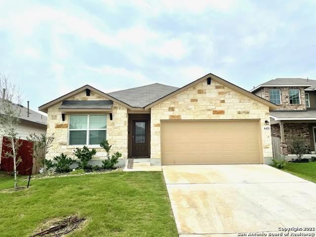 6425 Hoffman Plain, San Antonio, TX 78252 (MLS #1537681) :: The Castillo Group