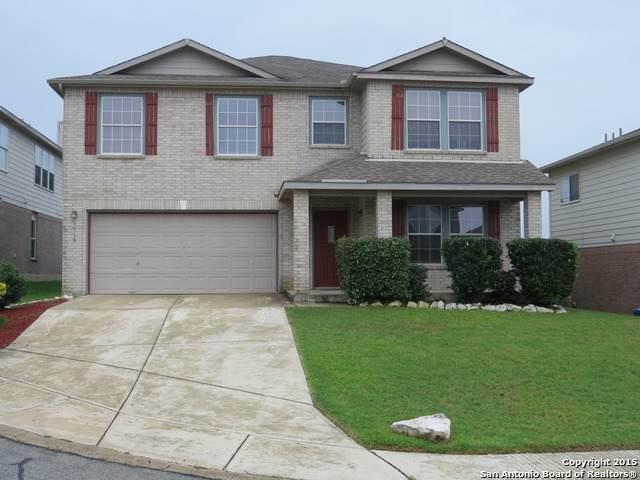 1510 Golden Wing, San Antonio, TX 78260 (MLS #1537752) :: Bexar Team
