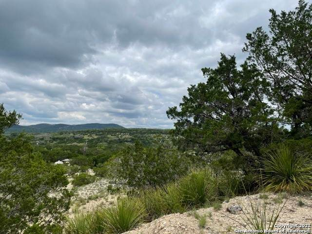 000 Hill Trail - Photo 1