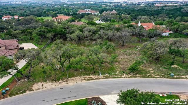 203 Wellesley Wood, San Antonio, TX 78231 (MLS #1537788) :: The Real Estate Jesus Team