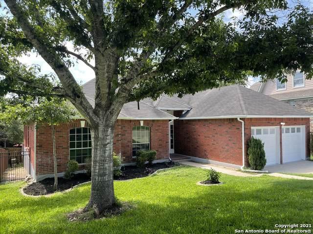 25206 Lost Arrow, San Antonio, TX 78258 (MLS #1537820) :: Keller Williams Heritage