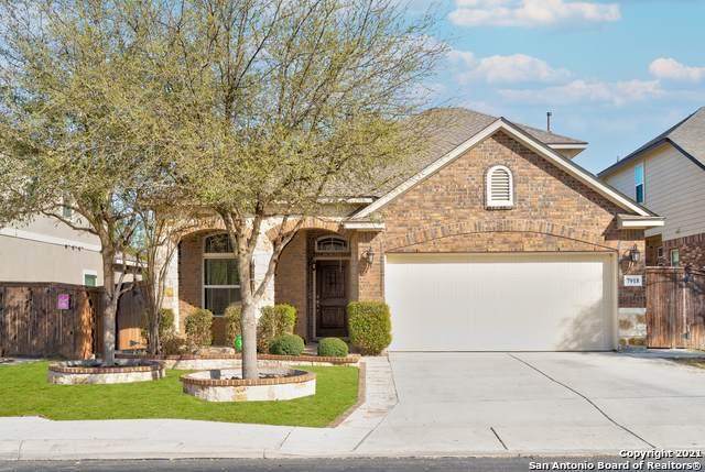 7918 Cimarron Ranch, San Antonio, TX 78254 (MLS #1537984) :: Bexar Team