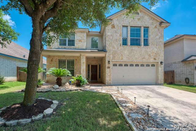 8031 Eagle Peak, Helotes, TX 78023 (MLS #1538098) :: Alexis Weigand Real Estate Group