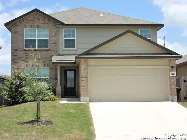 7443 Hercules Pt, San Antonio, TX 78252 (MLS #1538384) :: The Glover Homes & Land Group
