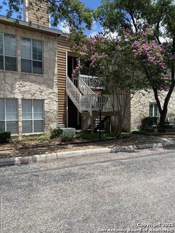 14745 Babcock Rd #705, San Antonio, TX 78249 (MLS #1538478) :: Bexar Team
