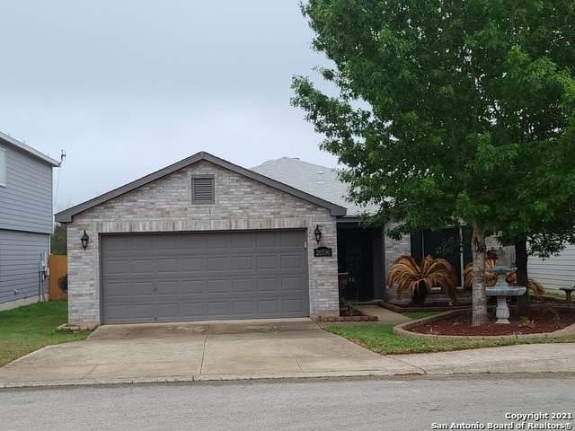 20530 Blue Trinity, San Antonio, TX 78259 (MLS #1538678) :: ForSaleSanAntonioHomes.com