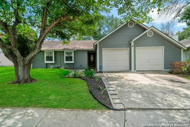 13807 Cane Dr, San Antonio, TX 78233 (MLS #1538770) :: BHGRE HomeCity San Antonio