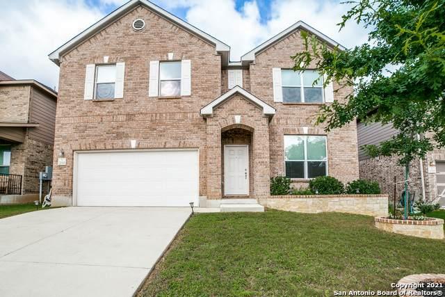 20315 Jove Oak, San Antonio, TX 78259 (MLS #1538789) :: Bexar Team